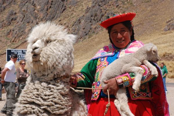 Peru Reise - alte Königreiche; Indígena mit Alpaka und Lamm