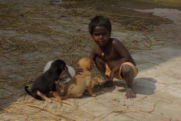 Indien Reise - indischer Junge mit Straßenwelpen