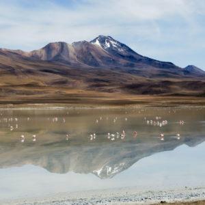 Laguna colorada - Bergreise mit Rudi Stangl